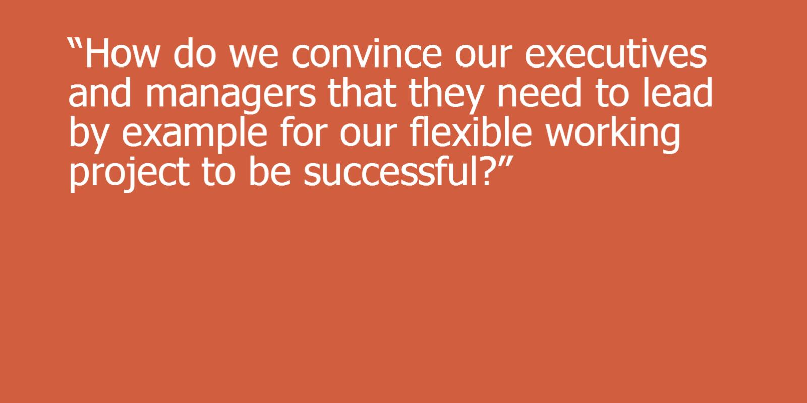 Image of How do we convince our executive and managers that they need to lead by example for our flexible working project to be successful?