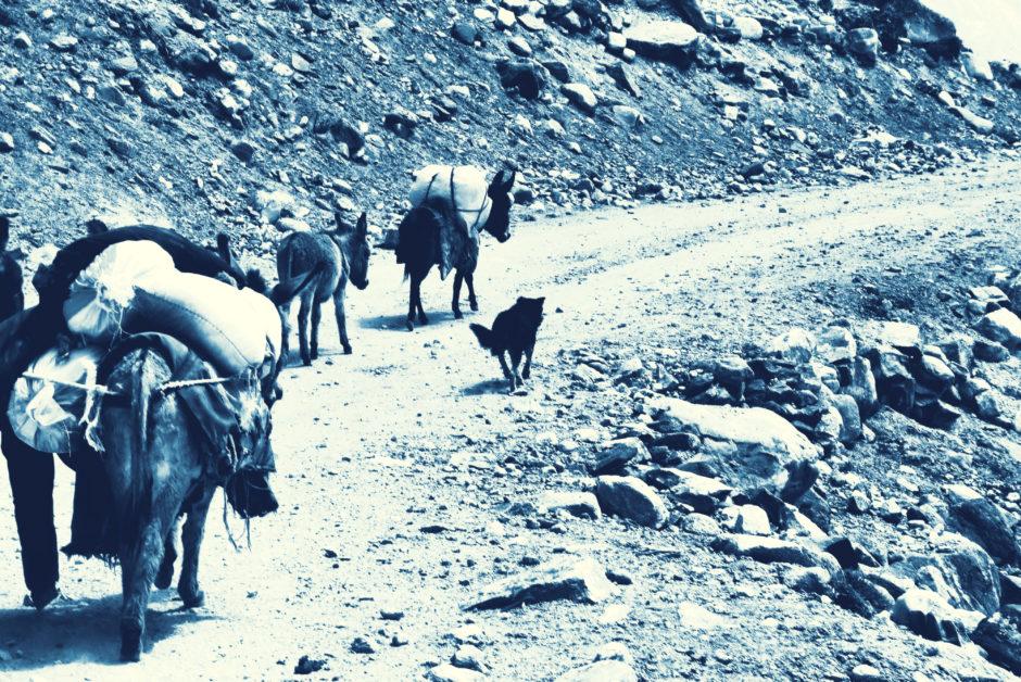 Photo of nomadic shepherds near Bibi Fatima springs, Tajikistan